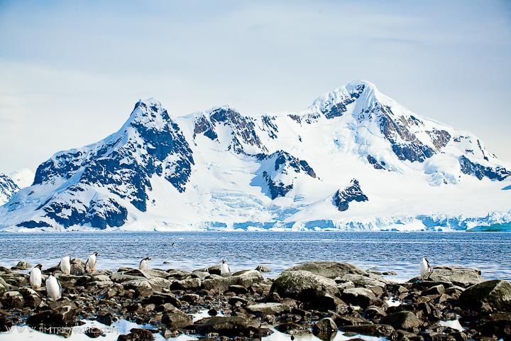 antarctica-scenery