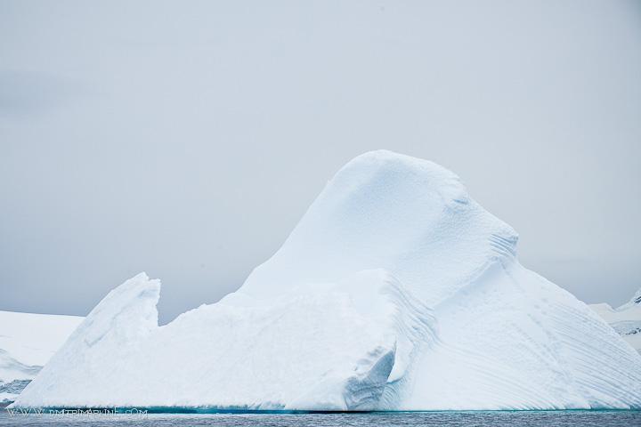 antarctica-icebergs
