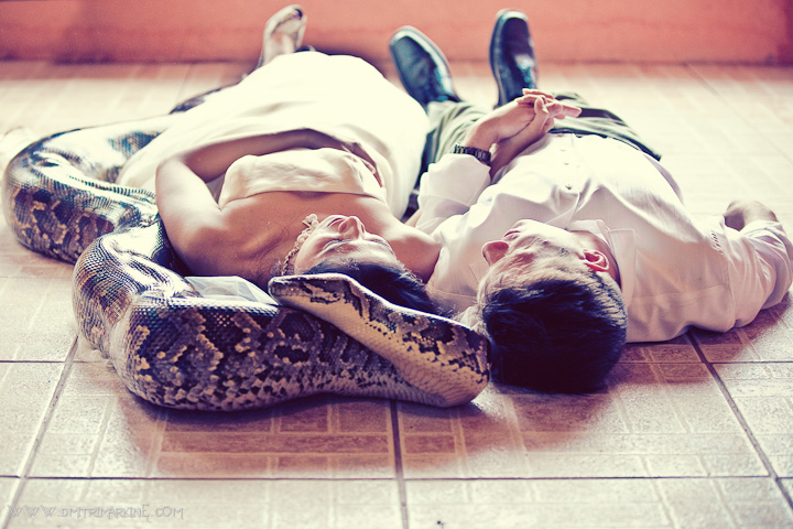 picture of bride and groom on the ground with live anaconda in Costa Rica