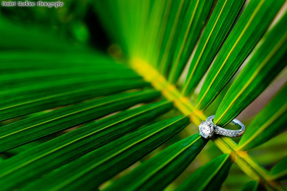 Cuba destination wedding diamond ring photograph