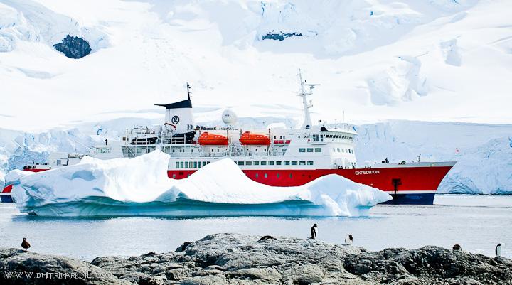 antarctica-expedition  wedding