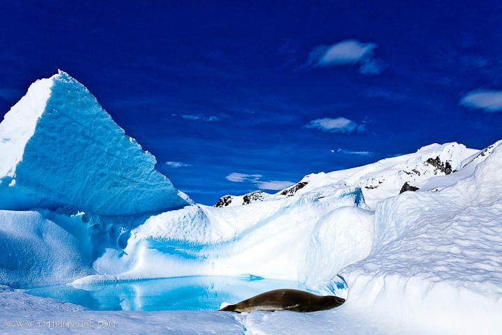 Gap-Adventures-Antarctica
