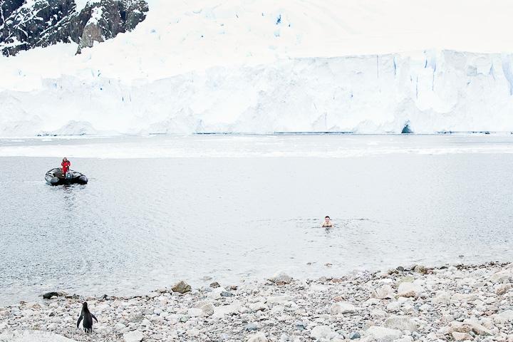 Swimming-in-antarctica