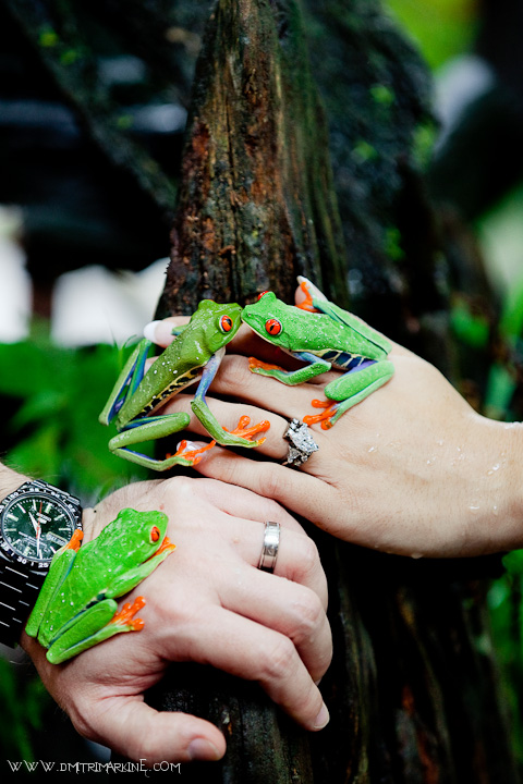 unique wedding pictures from Costa Rica