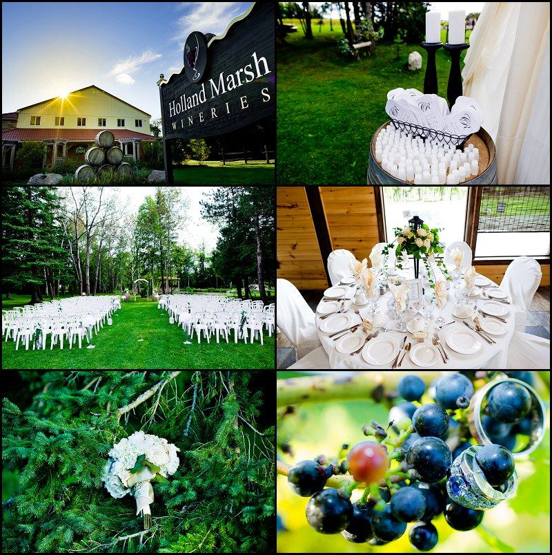 Holland-Marsh-Wineries 18270 Keele St. Newmarket