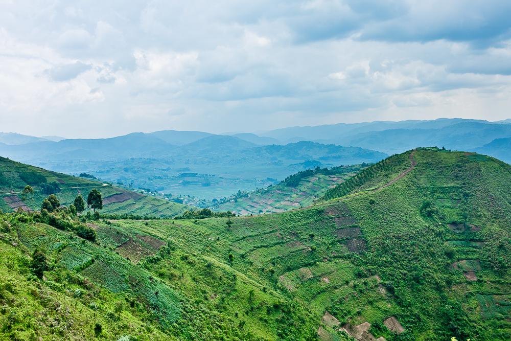 landscape picture africa Uganda fields