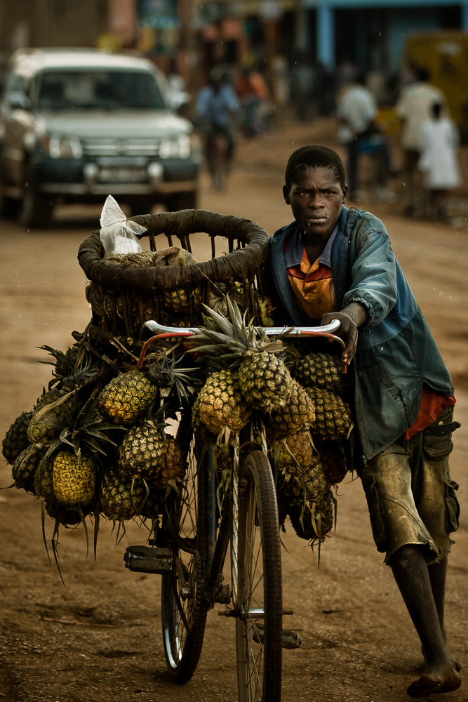 pineapple vendor africa