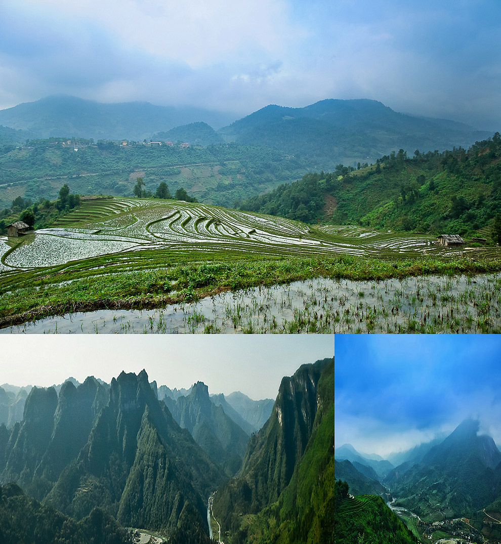 amazing rice fields in vietnam sapa